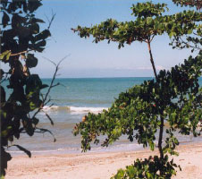 Northern Honduras beach